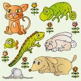 Insieme delle illustrazioni domestiche degli animali domestici Fotografia Stock Libera da Diritti