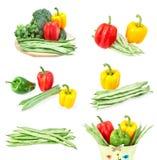 Insieme delle immagini della verdura fresca. Fotografie Stock