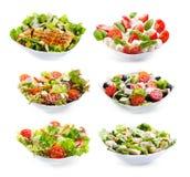 Insieme delle insalate del varioust Immagine Stock Libera da Diritti