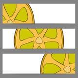 Insieme delle insegne con il limone di scarabocchio Immagine Stock