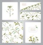 Insieme delle insegne, del modello, dello spazio in bianco e delle illustrazioni con i fiori illustrazione vettoriale