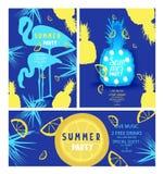 Insieme delle insegne del partito di estate Progettazione piana royalty illustrazione gratis