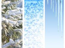 Insieme delle insegne di inverno Fotografie Stock Libere da Diritti
