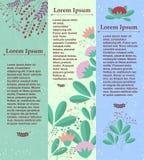 Insieme delle insegne verticali con gli elementi floreali e del posto per il vostro testo Vettore Fotografia Stock