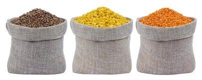 Insieme delle lenticchie differenti in borse isolate su fondo bianco Immagini Stock Libere da Diritti