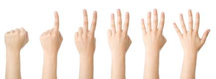 Insieme delle mani che fanno i numeri Immagini Stock Libere da Diritti