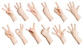 Insieme delle mani del bambino che mostrano i simboli Immagine Stock Libera da Diritti
