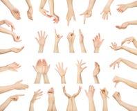 Insieme delle mani maschii bianche che mostrano i simboli Fotografia Stock