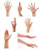 Insieme delle mani nel fondo bianco Fotografie Stock Libere da Diritti