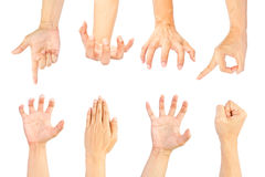Insieme delle mani su priorità bassa bianca Fotografie Stock Libere da Diritti