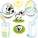 Insieme delle mucche. latte Fotografie Stock Libere da Diritti