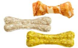 Insieme delle ossa di cane isolate su fondo bianco Immagini Stock Libere da Diritti