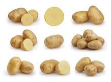 Insieme delle patate isolate su bianco Immagini Stock Libere da Diritti