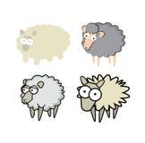 Insieme delle pecore Immagine Stock Libera da Diritti