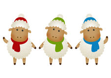 Insieme delle pecore Fotografia Stock Libera da Diritti