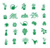 Insieme delle piante d'appartamento Immagini Stock Libere da Diritti