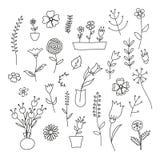Insieme delle piante e dei fiori della molla Immagine Stock