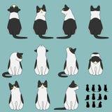 Insieme delle pose di seduta del gatto illustrazione vettoriale