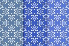 Insieme delle progettazioni floreali blu Modelli senza cuciture blu verticali Immagini Stock Libere da Diritti