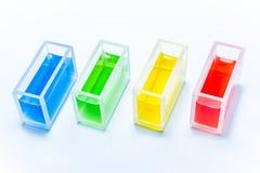 Insieme delle provette con il liquido di colore Immagini Stock Libere da Diritti
