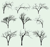 Insieme delle siluette degli alberi Fotografia Stock Libera da Diritti