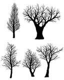 Insieme delle siluette degli alberi nudi su un fondo bianco Fotografia Stock Libera da Diritti