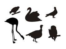 Insieme delle siluette degli uccelli Fotografia Stock Libera da Diritti