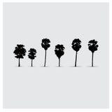Insieme delle siluette dell'albero di vettore Immagine Stock