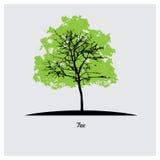 Insieme delle siluette dell'albero di vettore Fotografie Stock