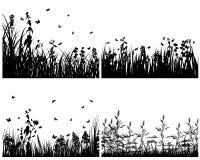 Insieme delle siluette dell'erba Fotografie Stock
