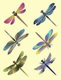 Insieme delle siluette delle libellule Immagine Stock Libera da Diritti