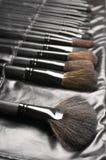 Insieme delle spazzole di trucco Fotografia Stock
