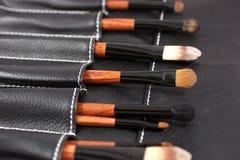 Insieme delle spazzole di trucco Fotografia Stock Libera da Diritti