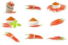 Insieme delle spezie calde isolate su un fondo bianco Fotografia Stock Libera da Diritti