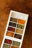 Insieme delle spezie differenti (pepe, sale, curcuma, foglie della baia, peperoncino rosso, erbe) Fotografie Stock Libere da Diritti
