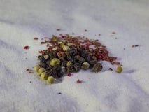 Insieme delle spezie e dei condimenti Fotografia Stock Libera da Diritti