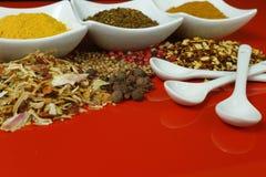 Insieme delle spezie e dei condimenti con i cucchiai bianchi, bianco su rosso Fotografia Stock Libera da Diritti