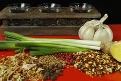Insieme delle spezie e dei condimenti con la cipolla verde sul piano d'appoggio rosso Fotografie Stock