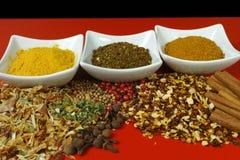 Insieme delle spezie e dei condimenti sul piano d'appoggio rosso Fotografia Stock Libera da Diritti