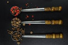 Insieme delle spezie e di 3 cucchiai d'annata del metallo sul nero Fotografia Stock Libera da Diritti