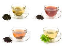 Insieme delle tazze di vetro con differenti tè Fotografia Stock Libera da Diritti