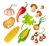 Insieme delle verdure Fotografia Stock
