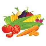Insieme delle verdure Immagini Stock Libere da Diritti