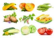 Insieme delle verdure autunnali isolate su bianco Fotografie Stock