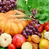 insieme delle verdure, della frutta e dei verdi Fotografie Stock Libere da Diritti