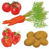 Insieme delle verdure realistiche Fotografia Stock Libera da Diritti