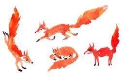 Insieme delle volpi dell'acquerello Fotografie Stock