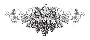 Insieme dello schizzo di monocromio dell'uva Fotografia Stock