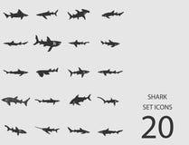 Insieme dello squalo delle icone piane Illustrazione di vettore Illustrazione di Stock