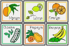 Insieme descrittivo della frutta tropicale Immagine Stock